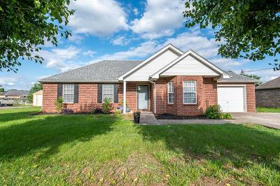 Smyrna Single Family Home Under Contract - Not Showing: 9016 Nevada Ave