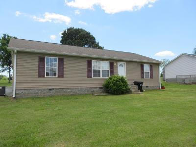New Johnsonville Single Family Home For Sale: 11 Hethcoat Dr