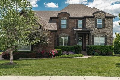 Hendersonville Single Family Home Under Contract - Showing: 116 Riverbirch Ln