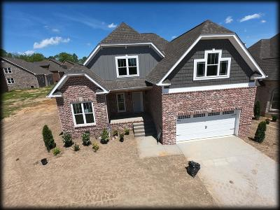 Spring Hill Single Family Home For Sale: 6044 Spade Drive Lot 260