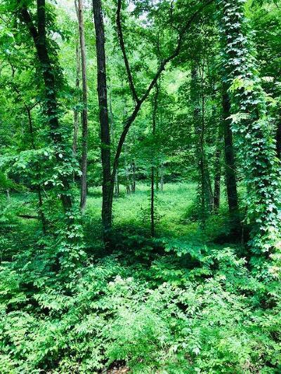 Pegram Residential Lots & Land For Sale: Pond Creek Rd
