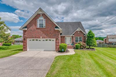Smyrna Single Family Home For Sale: 2918 Iona Dr