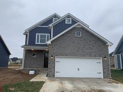 Clarksville Single Family Home For Sale: 537 Dexter Drive Lot 90