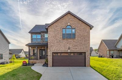 Single Family Home For Sale: 92 Sango Mills Lot 92