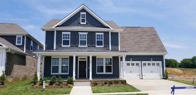 Hendersonville Single Family Home For Sale: 553 Nottingham Avenue #565