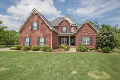 Smyrna Single Family Home For Sale: 128 Stonewood Ct