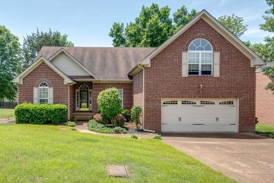 Antioch Single Family Home For Sale: 4420 Benchmark Dr