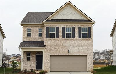 Spring Hill Single Family Home For Sale: 1003 Lonergan Circle # 68