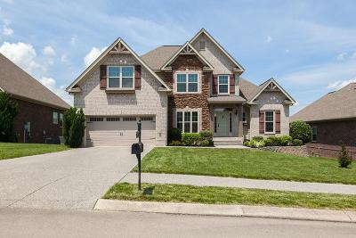 Williamson County Single Family Home For Sale: 1039 Belcor Dr