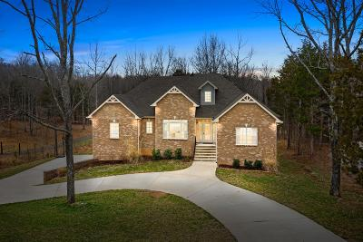Clarksville Single Family Home For Sale: 395 Salem Ridge Rd