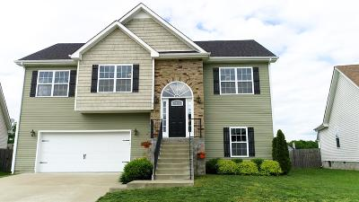 Clarksville Single Family Home For Sale: 617 Fennec Way