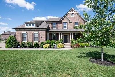 Spring Hill Single Family Home For Sale: 1065 Cantwell Pl