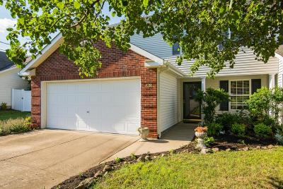 Lavergne Single Family Home Under Contract - Not Showing: 1038 Stonemark Trl