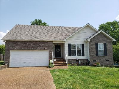 Spring Hill Single Family Home For Sale: 2620 Matchstick Pl