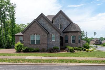 Hendersonville Single Family Home For Sale: 138 Fountain Brooke Dr