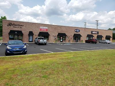 Adams, Clarksville, Springfield, Dover Commercial For Sale: 149 Kender Rhea Ct