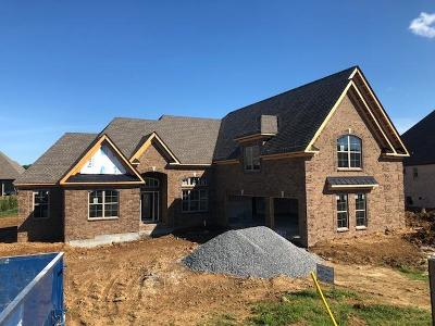 Hendersonville Single Family Home For Sale: 109 Worcesters Point