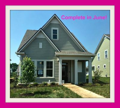 Spring Hill Single Family Home For Sale: 768 Ewell Farm Drive #339