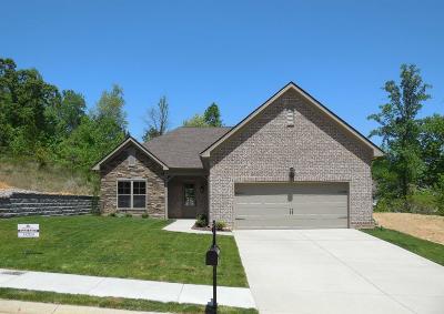 Dickson Single Family Home For Sale: 211 E Quail Hollow Way