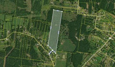 Wilson County Residential Lots & Land For Sale: Rutledge Ln