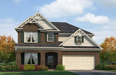 Smyrna Single Family Home Active Under Contract: 4010 Grapevine Loop Lot 606