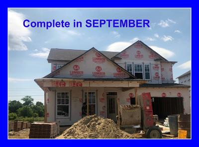 Spring Hill Single Family Home For Sale: 796 Ewell Farm Drive #353