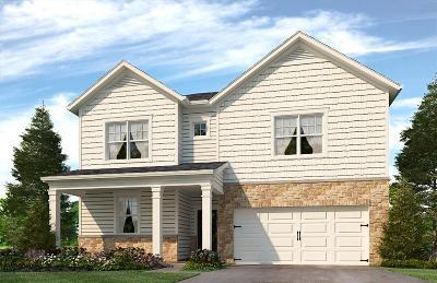 Smyrna Single Family Home For Sale: 503 Hawk Cove # 53