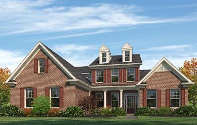 Nolensville TN Single Family Home For Sale: $653,784
