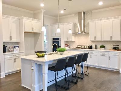 Williamson County Single Family Home For Sale: 2095 Catalina Way Lot #28