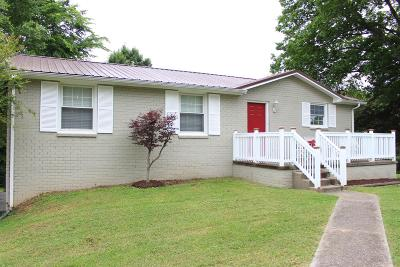 Smyrna Single Family Home For Sale: 119 Long Rifle Rd