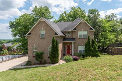 Murfreesboro Single Family Home For Sale: 522 Willow Hill Cir