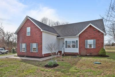 Rutherford County Single Family Home For Sale: 246 Slow Waters Dr