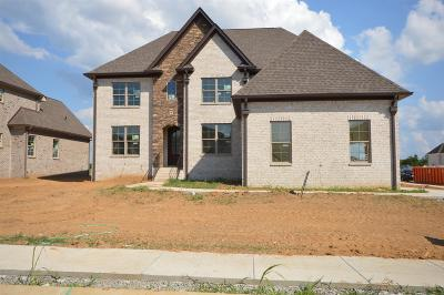 Spring Hill Single Family Home For Sale: 4076 Miles Johnson Pkwy (395)