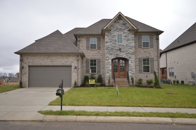 Spring Hill Single Family Home For Sale: 4078 Miles Johnson Pkwy (394)