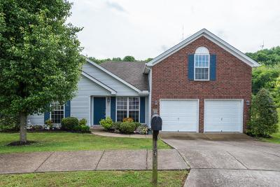 Davidson County Single Family Home For Sale: 5464 Daniel Ray Dr