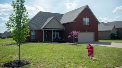 Smyrna Single Family Home For Sale: 8104 Dave Way