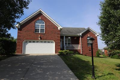 Mount Juliet Single Family Home For Sale: 559 Summit Way