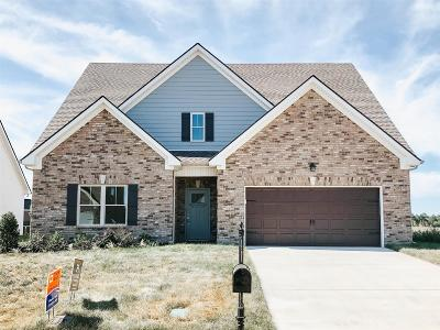 Murfreesboro Single Family Home For Sale: 3915 Runyan Cove (Lot 18)