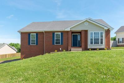 Clarksville Single Family Home For Sale: 3147 Westchester Dr