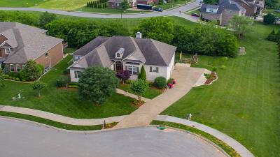 Spring Hill Single Family Home For Sale: 7005 Silver Cloud Way
