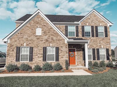 Murfreesboro Single Family Home For Sale: 3834 Faithway Dr
