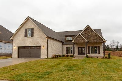 Clarksville Single Family Home For Sale: 2842 Brunswick Drive Lot 33