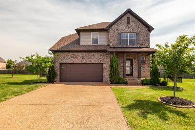 Hendersonville Single Family Home For Sale: 107 Valcour Ct