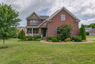 Spring Hill Single Family Home For Sale: 4000 Colby Ln