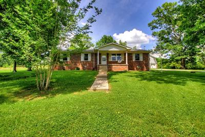 Bedford County Single Family Home For Sale: 245 Philippi Rd