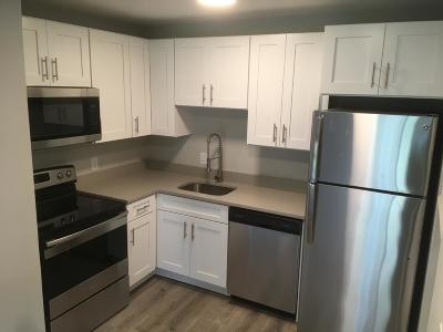 Madison Condo/Townhouse For Sale: 555 N Dupont Ave Apt A20
