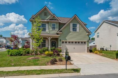 Spring Hill Single Family Home For Sale: 1001 Keeneland Dr