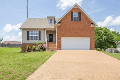 Spring Hill Single Family Home For Sale: 3966 Kristen St