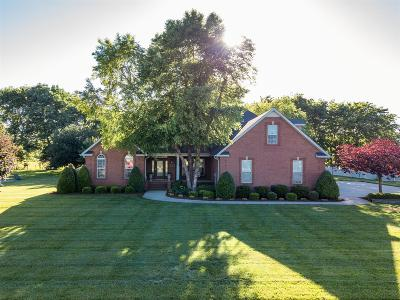 Winchester Single Family Home For Sale: 293 Bell Dr W