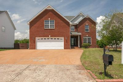 Clarksville Single Family Home For Sale: 1193 Castlewood Dr